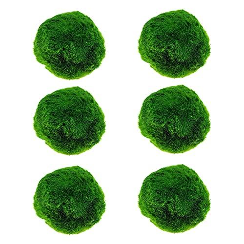Bolas de musgo, plantas de acuario de musgo en vivo, planta de estanque, decoración de acuario, 4/6 piezas de bolas de hierba de agua para peces, camarones (4 cm)