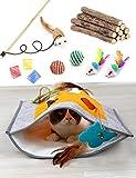 17 Pcs Cat Toys Kitten Toys Assortments, Cat Crinkle Play Mat, Cat Teaser Wand Interactive Toys Cat Springs, Cat Catnip Sticks, Cat Toothbrush, Crinkle Balls for Cat, Puppy, Kitty, Kitten