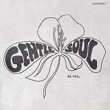 Gentle Soul