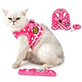 Brother cat Dog Puppy Small Dog/Cat Dots Vest Harness Leash Set Mesh Padded