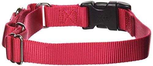 PetSafe Martingale Halsband mit Schnellschnalle, 2,5 cm, Größe M, Rot