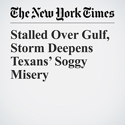 Stalled Over Gulf, Storm Deepens Texans' Soggy Misery copertina