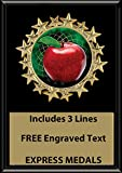 Express Medals 5x7 Teacher Apple Plaque Award Trophy with Engraved Plate Black Color FCL403