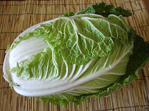 ミニ白菜 1個 または白菜は1/2カット