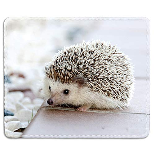 dealzEpic - Art Mousepad - Natural Rubber Mouse Pad Printed with Cute Hedgehog - Stitched Edges - 9.5x7.9 inches