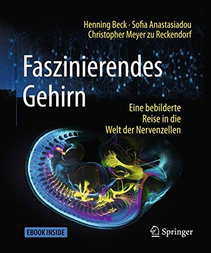 Faszinierendes Gehirn: Eine bebilderte Reise in die Welt der Nervenzellen