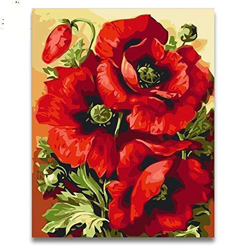 Pintura por números Bricolaje Bolsa de pintura al óleo Hermosa rosa roja Amapola Diy Dibujo Figuras para colorear con niños adultos Juegos de dibujo-40X50 (Sin marco) DIY Pintura al óleo