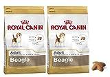 2 x 12 kg – Royal Canin Multi-Buy Beagle Dry Adulto comida para perro