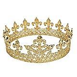 Janefashions Medieval Full King's King Gold Metal Crown Rhinestone Crystal Fleur-De-Lis Men's H919 (Gold-Plated)
