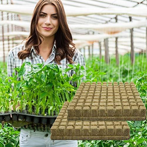 NANUNU 50Pcs Rockwool Steinwolle hydroponischen wachsen Medien Starter Cubes Stecker für Stecklinge Cloning Pflanzenvermehrung Saatgut Ausgangspflanze Bed