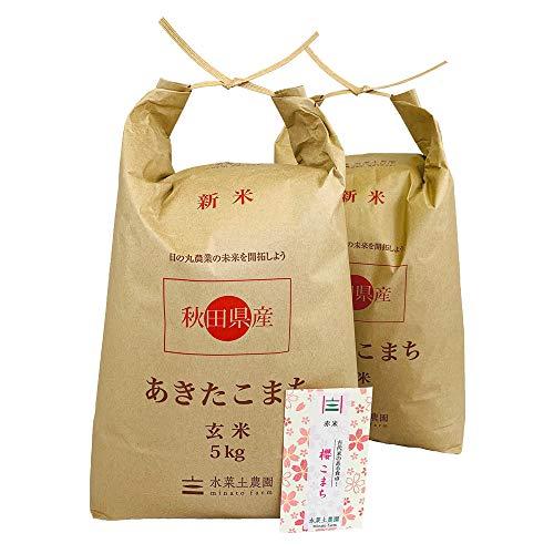 【おまけ付き】秋田県産 農家直送 あきたこまち 玄米10㎏(5㎏×2袋)令和2年産 / 古代米お試し袋付き