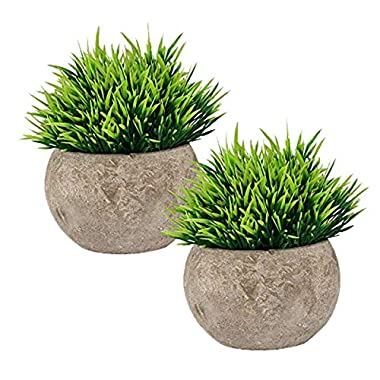 The Bloom Times Fake Plant for Bathroom/Home Decor, Small Artificial Faux Greenery for House Decorations (Potted Plants)