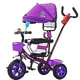 Aocean Triciclos Bebes Evolutivo, Plegable para BebéS a Partir de Los 8 Meses,con Control Parental Desde El Mango Y Ruedas con Banda De Goma Capacidad de Carga 30KG, Purple