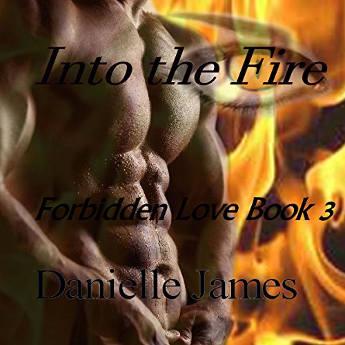 Into the Fire Titelbild