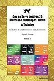 Cao da Serra de Aires 20 Milestone Challenges: Tricks & Training Cao da Serra de Aires Milestones for Tricks, Socialization, Agility & Training Volume