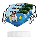 Face Masks Dog On Blue Air Mattress in Water Refreshing Windproof for Women&Men