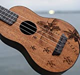 Oscar Schmidt, 4-String Ukulele (OUNTURTLE)