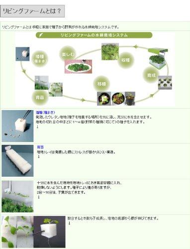 リビングファーム『中型水耕栽培器(RHW8)』