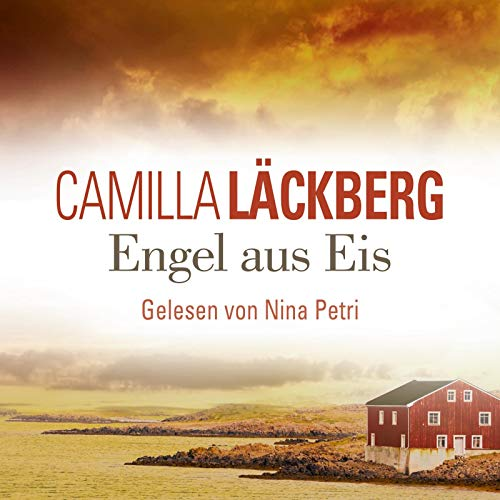 Engel aus Eis (Ein Falck-Hedström-Krimi 5): 4 CDs