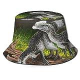 Unisex Bucket Hat Reversible Fisherman Hat Packable Outdoor Cap Beach Hats(Baby Allosaurus) Black