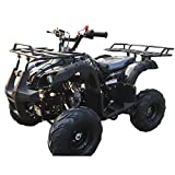 X-PRO 125cc ATV Quad Kids ATV Youth ATV 4 Wheeler 125 ATV...