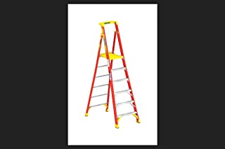 Best werner podium platform ladder Reviews