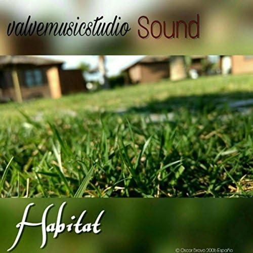 Valvemusicstudio Sound