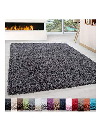 Carpet 1001 Structure à Fibres Longues Tapis Shaggy uni de Couleur de différentes Tailles et Couleurs - Gris, 160x230 cm
