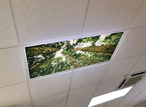 Forest Canopy - 2ft x 4ft Drop Ceiling Fluorescent Decorative Ceiling Light Cover Skylight Film