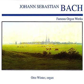 Johann Sebastian Bach: Famous Organ Works