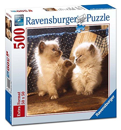 Ravensburger Italy- Gatti Himalayani Puzzle Quadrato, 500 Pezzi, Multicolore, 15220