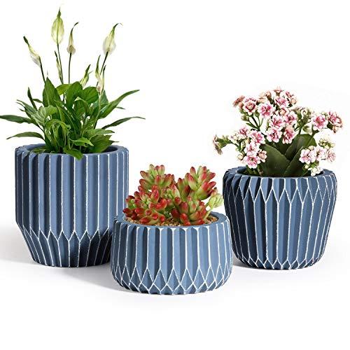 T4U 8cm Zement Sukkulenten Topf 3er-Set, Modern Klein Blumentopf Übertopf für Zimmerpflanzen Kakteen Moos Innenbereich (Pflanze Nicht Enthalten)