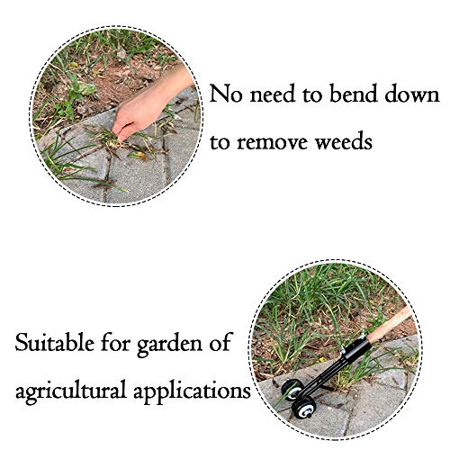 Hawthor Weeder Tool for Garden, Manual Weeds Snatcher, Crack and Crevice Weeding Tool, Weed Puller Tool, Weed Cleaning Tool Garden Tools for Patio Backyard (Straight Hook)