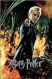 Poster 60 x 90 cm: Die Heiligtümer des Todes II - Draco