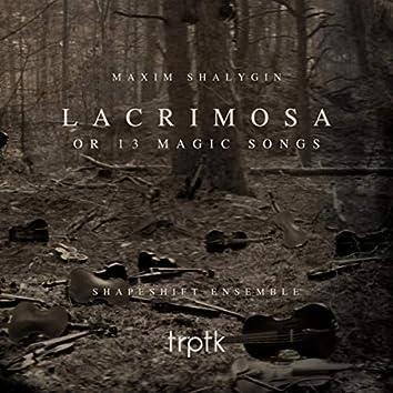 Shalygin: Lacrimosa or 13 Magic Songs