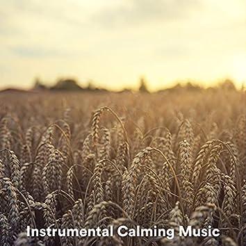 Instrumental Calming Music