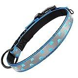Grand Line Collar Perro Reflectante con Hebilla Seguridad Collar Ajustable Nailon Collar Acolchado de Neopreno Suave Mascotas Perros Cachorro Pequeñas Medianas Grandes (Cuello 28-40cm, Azul)