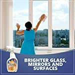 Earth Friendly Products ECOS Window Cleaner with Vinegar, 22-Ounce, Brighter Glass Mirrors