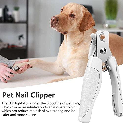jiabushu shop Suministros de calidad para mascotas, cortaúñas para mascotas LED profesional eléctrico recargable para perros pequeños, medianos y grandes, ideal para mascotas