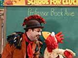 School for Chickens
