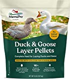 Manna Pro Duck Layer Pellet | High Protein for Increased Egg Production | Formulated with Probiotics to Support Healthy Digestion | 8 Pounds