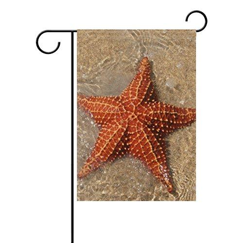 Bennigiry Plage étoile Polyester Garden Drapeau Bannière 30,5 x 45,7 cm, Seasonal Jardin Drapeau pour l'extérieur décoratif Drapeau pour mariage, Polyester filé, multicolore, 12x18(in)