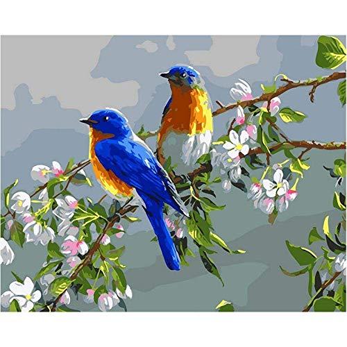 DIY olieverfschilderij blauwe vogels doe-het-zelf schilderen door cijfers moderne muur kunst foto verf door cijfers Kits voor Home Decor Arts Box Cadeau-40 * 50Cm, zonder frame
