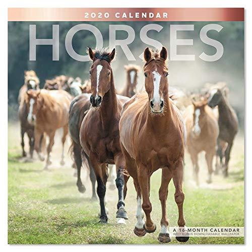 2020 Horses Wall Calendar (LME1591020) Colorado