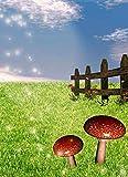Pintura por número para adultos,kit de pintura DIY por número para principiantes o niños como regalo (16 x 20 in.) sin marco-Cielo azul con setas de hierba y valla de madera