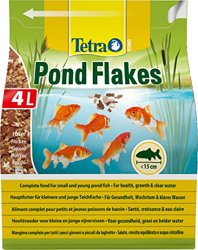 Goldfish Food Top Recommendations To Feed Your Goldfish Aquapona