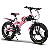 FUFU 20'Niños Bicicleta Al Aire Libre, para 9-14 Años, Niños, Niños, Niñas, Niños, Chicos Ajustables, Bicicleta De Montaña, Azul, Rosa (Color : Pink)