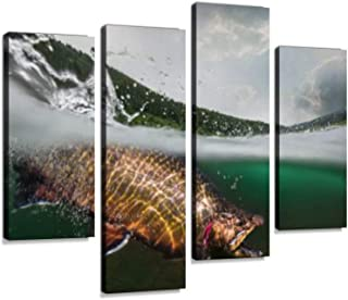 Fishing. Trout, Underwater View.Canvas Wall Art Hanging Paintings Modern Artwork Abstract Picture Prints Home Decoration Gift Unique Designed Framed 4 Panel