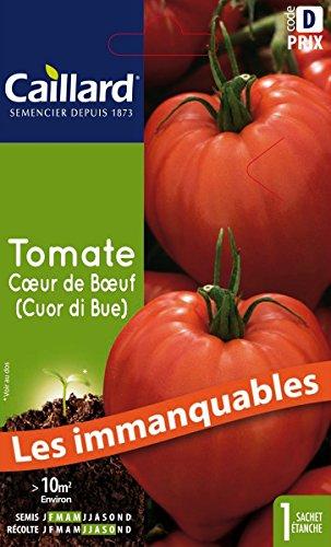 Caillard PFCC15941 Graines de Tomate Coeur de Boeuf