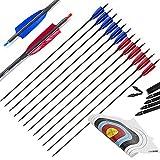 ONEBOW 12 uds. Flechas de Carbono para Tiro con Arco | Spine 500 | Flechas para Arco Profesionales de Caza o Práctica de Tiro con Arco